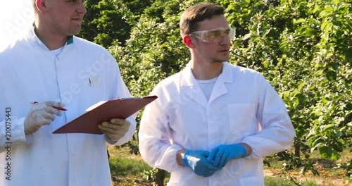 Valokuva  Two young agronomists or a biologist, working on the apple tree, write tests in a notebook, in white coats, rubber gloves, dna, goggles, leaf tests, a background of nature and greens