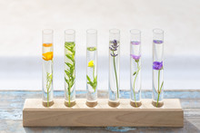 Test Tubes With Perfume Sample...
