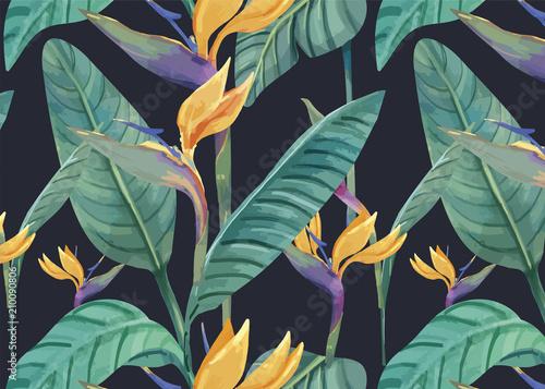 recznie-rysowane-ptak-rajski-wzor