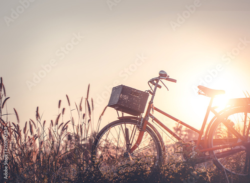 Crédence de cuisine en verre imprimé Velo beautiful landscape image with Bicycle at sunset on glass field meadow ; summer or spring season background