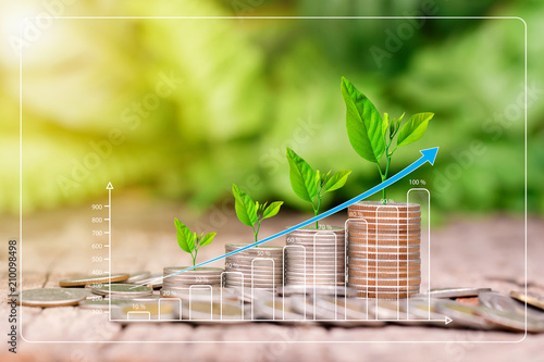 Tree growing on coins stack with sunray for saving money concept Fototapet