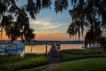 Southeast Savannah Marsh And D...