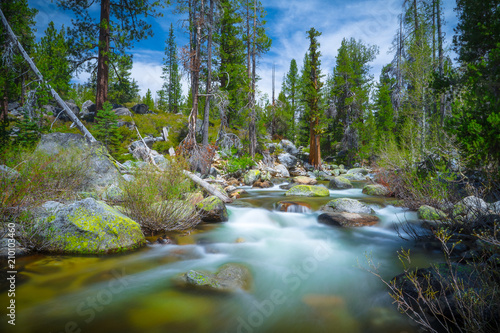 Foto op Aluminium Rivier Beautiful Flowing Mountain Stream Landscape - Yosemite National Park