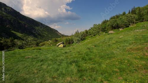 Piękna zielona łąka na polskiej wsi w górach - widok z okna - 210103897