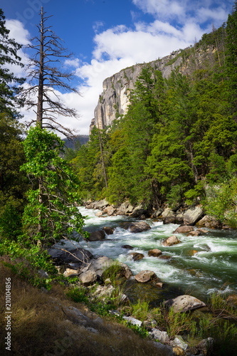 Poster Rivier Merced River Rapids and Granite Canyon in Yosemite National Park