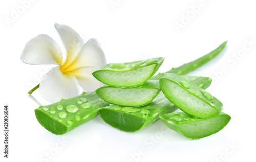 aloe vera fresh leaf. isolated on white background Wallpaper Mural