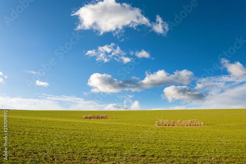 Photo campagne sous un ciel ensoleillé
