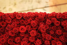 Flower Wall, Natural Red Roses...