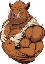 Strong Ferocious Boar