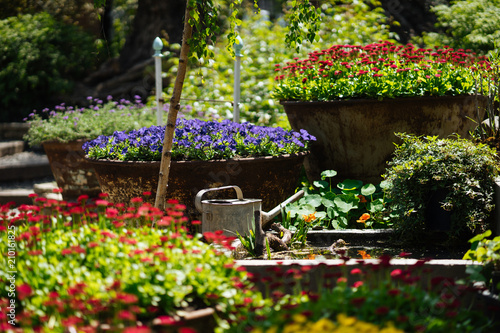 Foto op Canvas Tuin Garden with multicolor flowers
