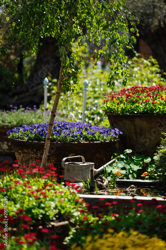 Spoed Foto op Canvas Tuin Garden with multicolor flowers