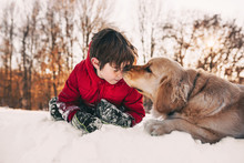 Boy Playing In Snow With His Golden Retriever Dog