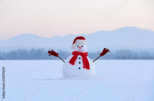 Winter scenery Canvas Print