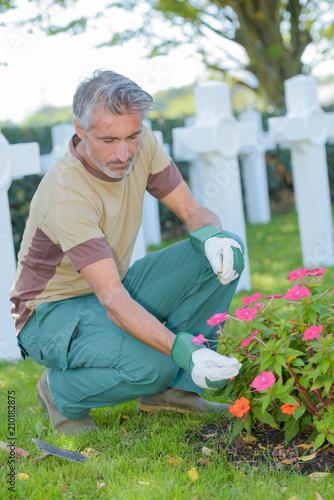 Keuken foto achterwand Begraafplaats checking the plant on the grave