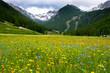 Landschaften im Queyras in den französischen Alpen