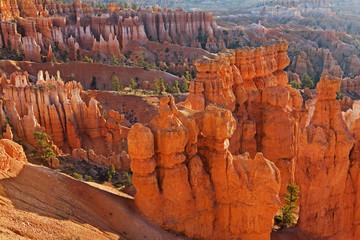 Navajo Trail in Zion National Park, Utah