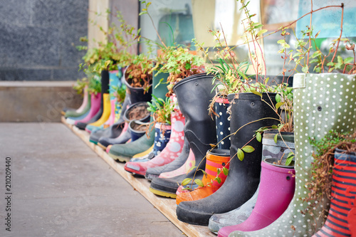 Creative flower decoration set in old rubber boots