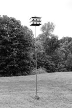 Country Birdhouse Black And Wh...