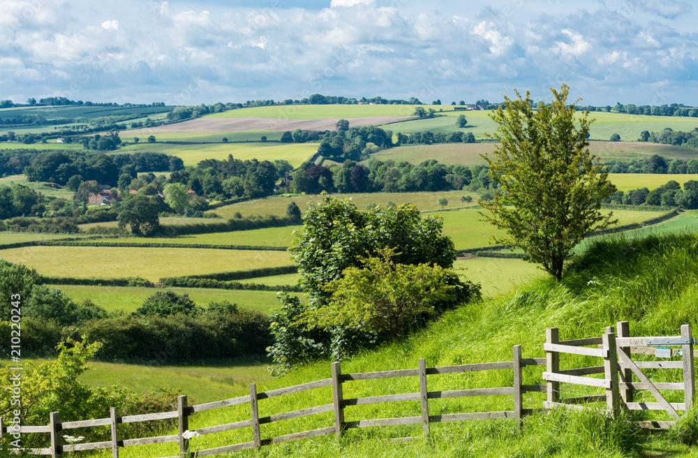 Fototapeta English countryside