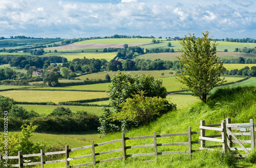 Obraz English countryside - fototapety do salonu