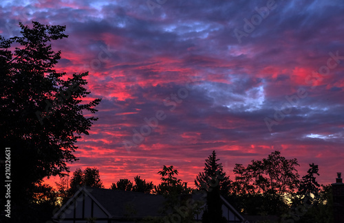 Foto op Plexiglas Crimson Brilliant Sunset With Silhouette of Trees and Houses in a Suburban Neighborhood