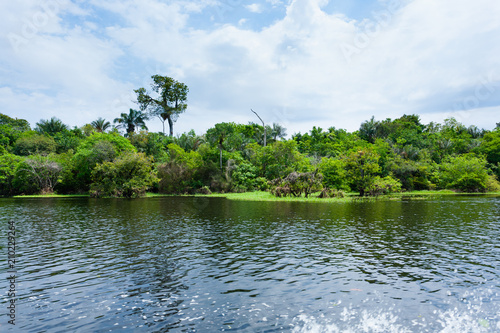 Fotografia  Panorama from Amazon rainforest, Brazilian wetland region.