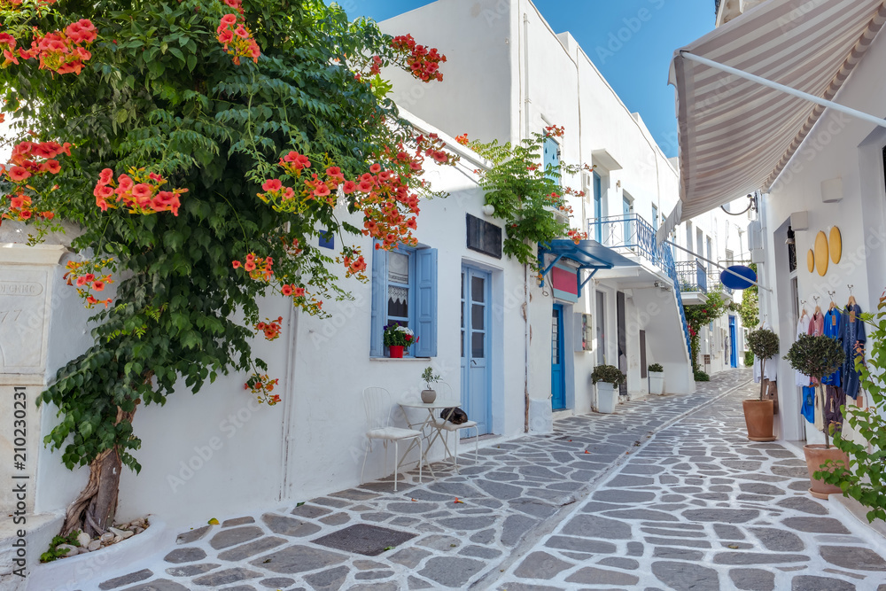 Fototapeta View of a typical narrow street in old town of Parikia, Paros island, Cyclades, Greece