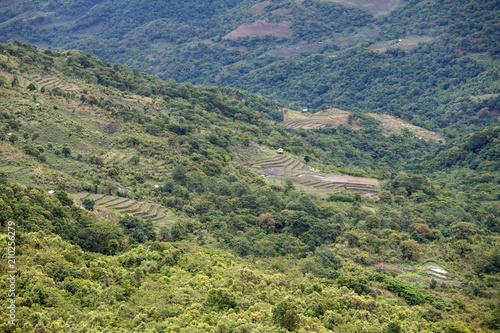 Foto op Canvas Pistache Natural Landscape, Burma