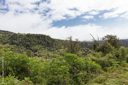 Tuinposter Wit Landscape of Aderdare mountain. A blue sky over green jungle. Kenya