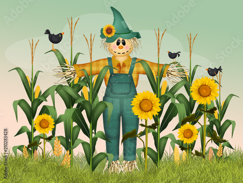 Stampa su Tela scarecrow in the field of panicles