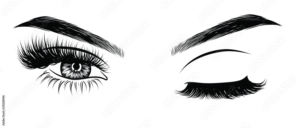 Fototapeta Sexy winking luxurious eye with perfectly shaped eyebrows and full lashes. Idea for business visit card, typography vector. Perfect salon look.