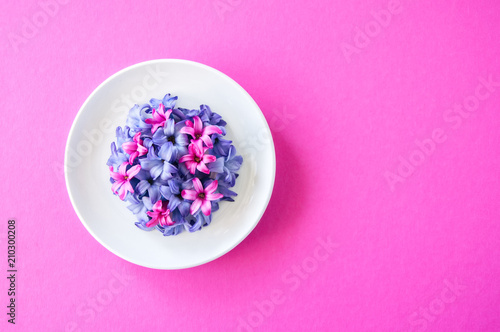 Foto op Aluminium Spa Group of violet and magenta petals of hyacinth flower on magenta background. Top view.