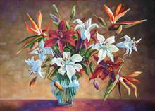 Strelitzia Among The Lilies. P...