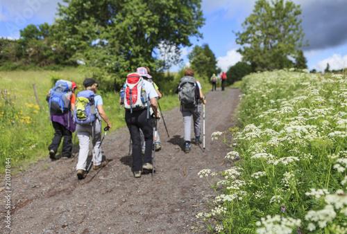 Fototapeta hikers walking in the countryside obraz