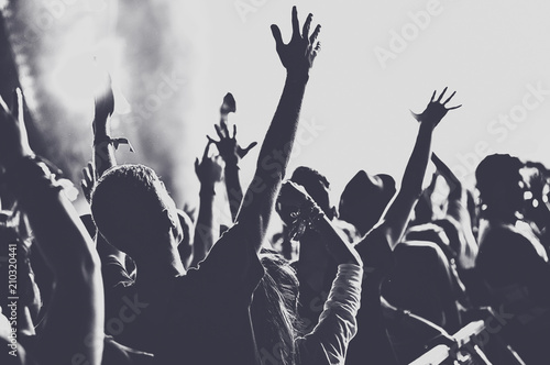 People with raised arms partying at concert