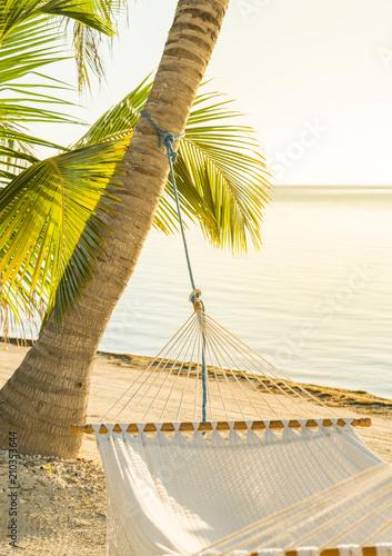 Fotografía  Tranquil Beach Hammock