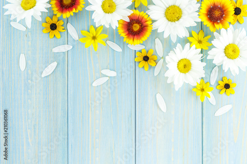 Foto auf Leinwand Blumen White daisies and garden flowers on a light blue worn wooden table. The flowers are arranged in the upper part, the empty space left below.