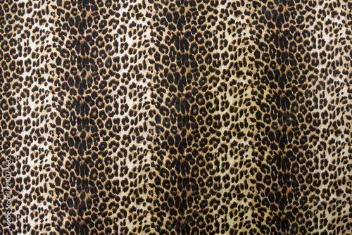 Foto op Aluminium Luipaard wild animal pattern background or texture