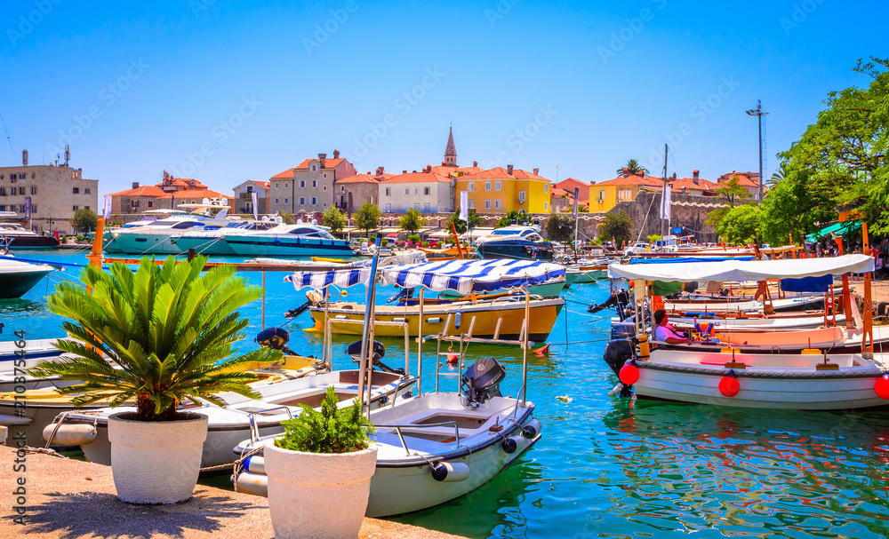 Fototapety, obrazy: Port in old town Budva, Montenegro