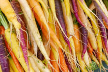Bunches Of Colorful Rainbow Carrots At The Farmers Market