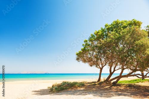 Keuken foto achterwand Mediterraans Europa Beautiful beach with turquoise water on Crete island, Greece.