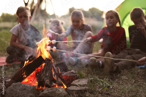 Little children frying marshmallows on bonfire. Summer camp