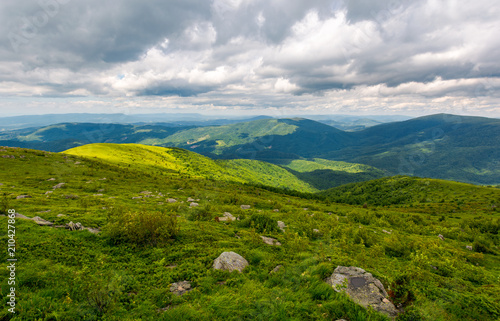 Staande foto Bleke violet grassy meadow on hillside on a cloudy day. beautiful mountainous landscape in summertime. location Runa mountain, Ukraine