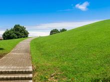 空が広がる緑の丘