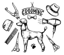 Dog Grooming Set. Hand Drawn Vector