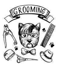 Dog Grooming Set. Hand Drawn Vector