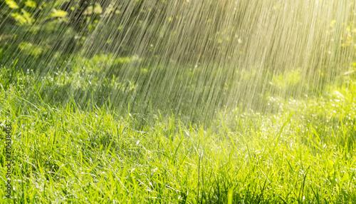 Stampa su Tela Warm summer rain and sunny day