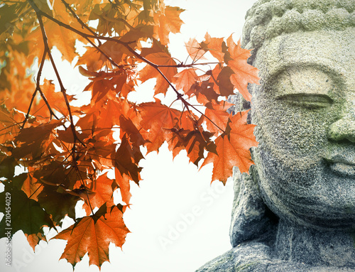 Seoul, Korea, Amazing stone Statue of Buddha and red Maple Tree in Asia during s Canvas Print