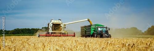 Getreideernte - Mähdrescher und Landtechnik für den Getreideabtransport, Banner Canvas