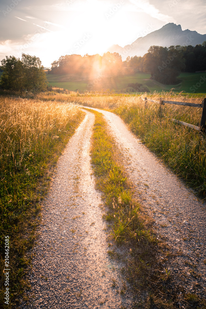 Fototapeta Feldweg und Getreidefeld im Sonnenuntergang, Harmonie